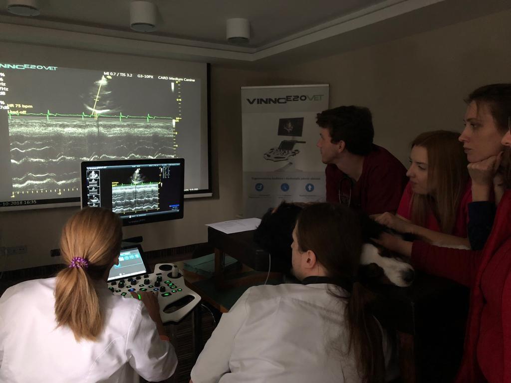 Warsztaty Norax Medical na MasterVet w Kielcach