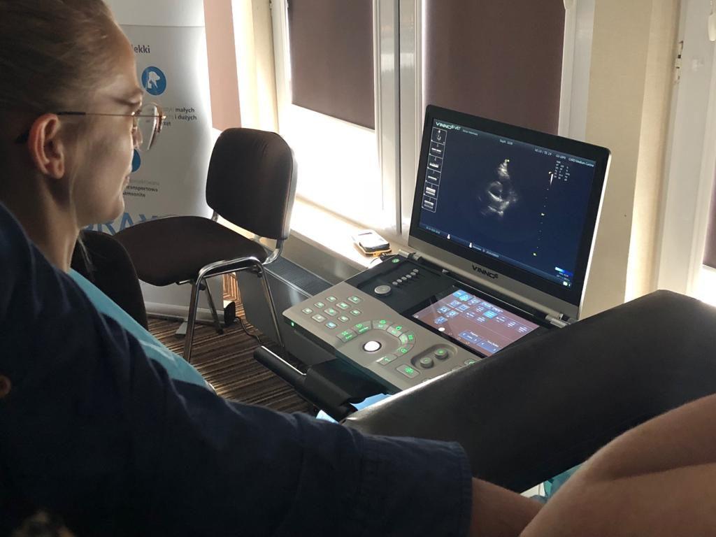 Obraz z ultrasonografu weterynaryjnego VINNO